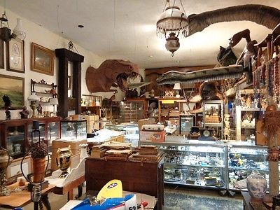 Antique Collectible Estate Buy Out Store