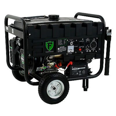 Durostar 4400 Watt Portable Dual Fuel Generator