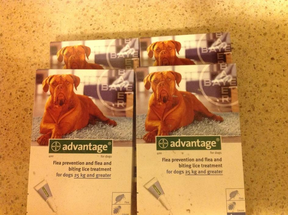 Advantage Blue 100 (15 Qty.) for Extra Large Dogs 55  lbs ** FREE SHIPPING **
