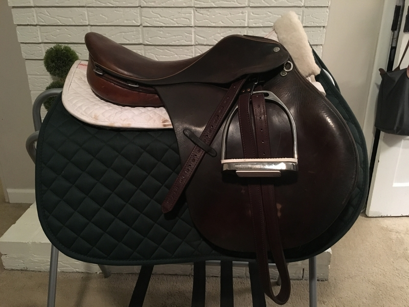 Crosby CC Saddle