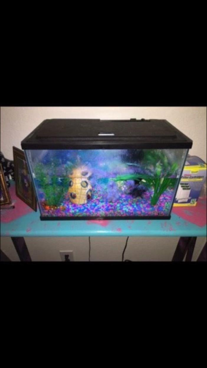10 gallon tanks for sale classifieds for Fish for a 10 gallon tank