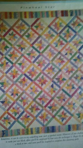 Quilt Kit Reproduction 1930's prints includes 50 fq 95 x 112