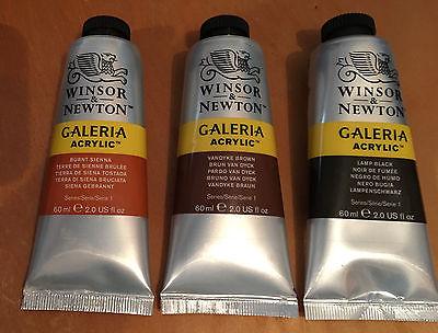 WINSOR & NEWTON Galeria Acrylic artist paint 60ml tubes assorted colors