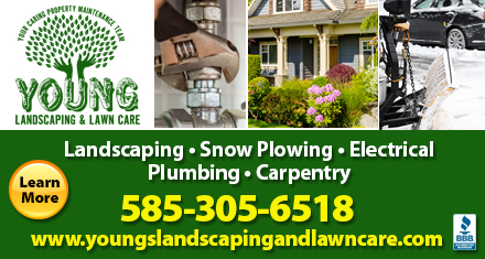 Young Landscaping & Lawn Care