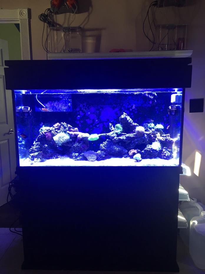 90 fish tank for sale classifieds for 90 gallon fish tank stand