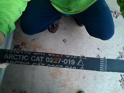 1978 ARCTIC CAT EL TIGRE BELT