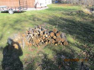 Firewood---cut up and ready. FREE (Pocatelo)