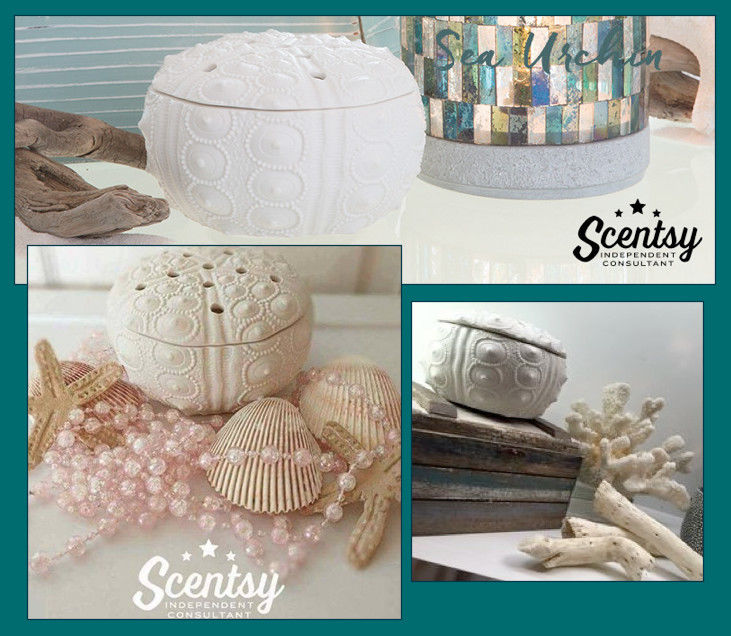 Scentsy Warmer Sea Urchin, beach, coastal, vacation, sea shell NIB