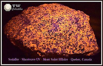 HUGE (20 lbs) Fluorescent Sodalite Mont Saint-Hilaire, Quebec, Canada