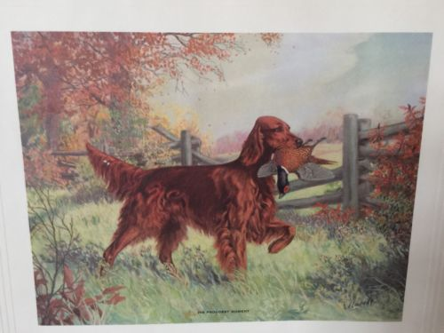 Hunting Dogs Signed Litho-Print HIS PROUDEST MOMENT  Gerlach Barklow Co. VTG