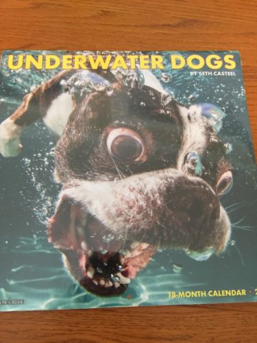 Underwater Dogs 2017 Wall Calendar NEW