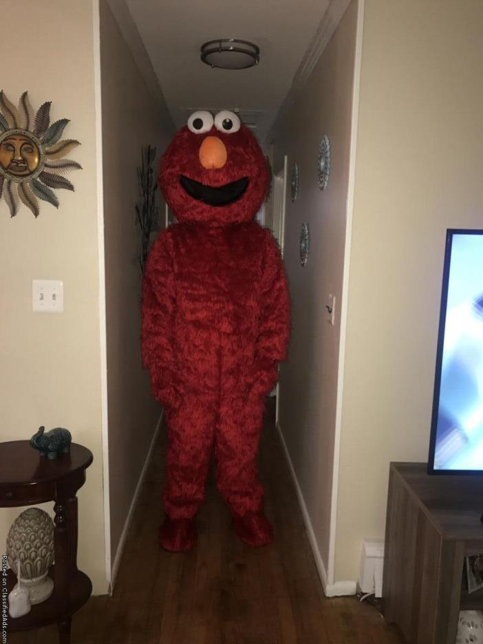 Mascots available for rent