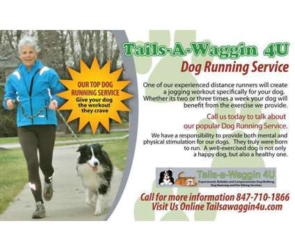 Tails-a-Waggin 4U Dog Walker, Pet Sitter, Dog Runner Buffalo Grove, IL