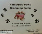Pampered Paws Grooming Salon