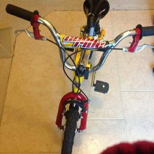 Schwinn Boys Bike-for sale(No Training Wheels) (McKinney)