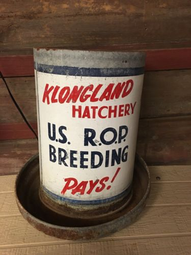 Klongland Hatchery Vintage Advertising Chicken Feeder Farm Barn Find