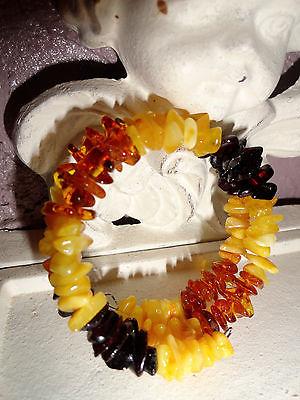 Genuine Baltic Amber Polished Bracelet Variegated Amber Colors Natural Healing
