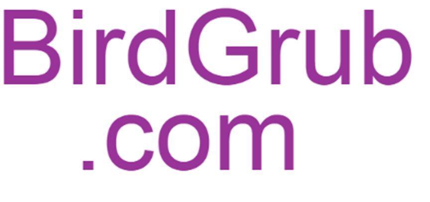 BirdGrub.com | Short Bird Food Domain Name