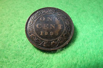 1899 Canadian One Cent Coin