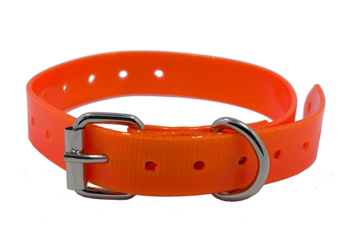 Replacement Extra Collar Strap Band Buckle ¾