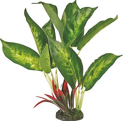 Colorburst Florals Dieffenbachia Variegated Leaf