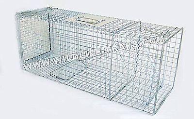 Feral Cat Trap 32