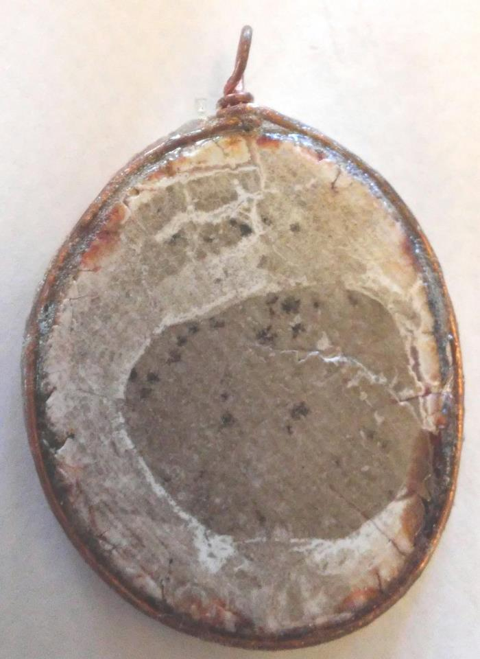 Petrified Wood Disc Pendant, Copper Wire Wrap, Unique Stone Work, One of a Kind
