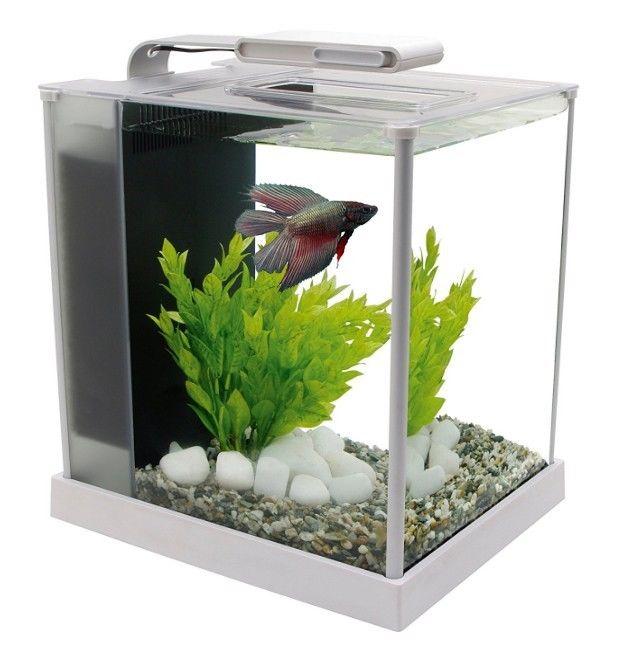 Nano cube fish tank for sale classifieds for Nano cube fish tank