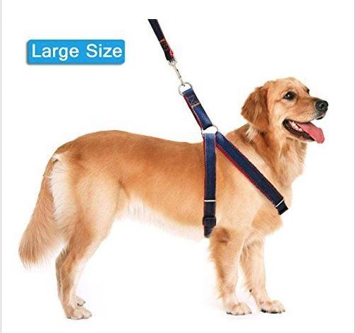 Lifepul(TM) Dog Leash Harness / Collar Set - Adjustable Heavy Duty Denim Harness