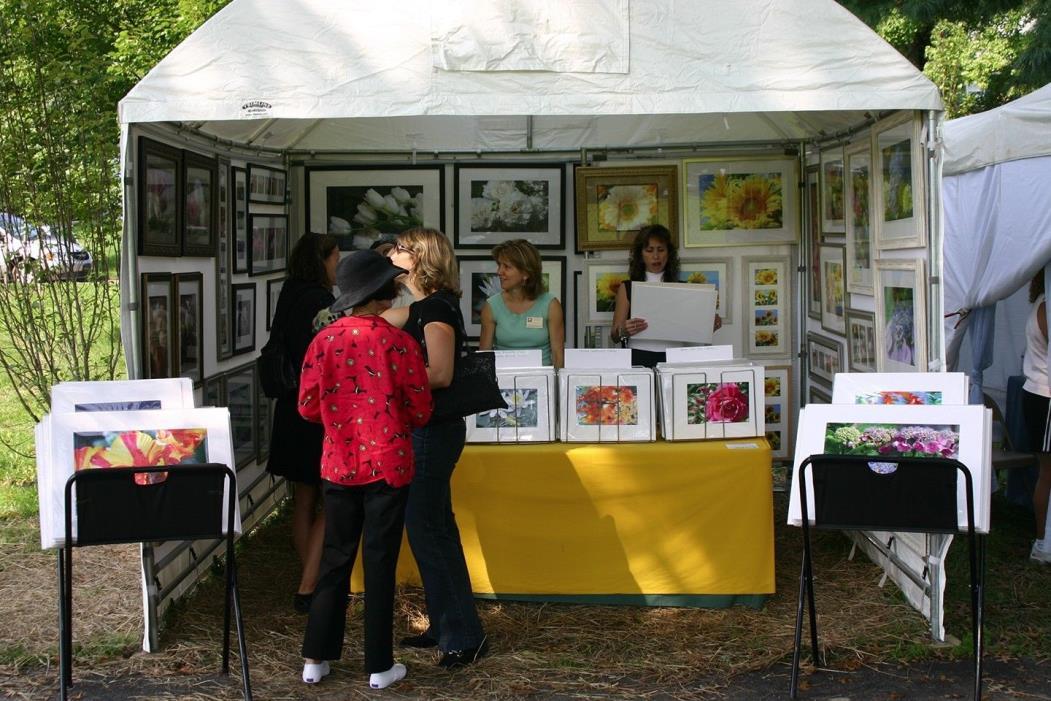 Flourish TrimLine Canopy 10x10 Artist Art Fair Tent Display Show Booth