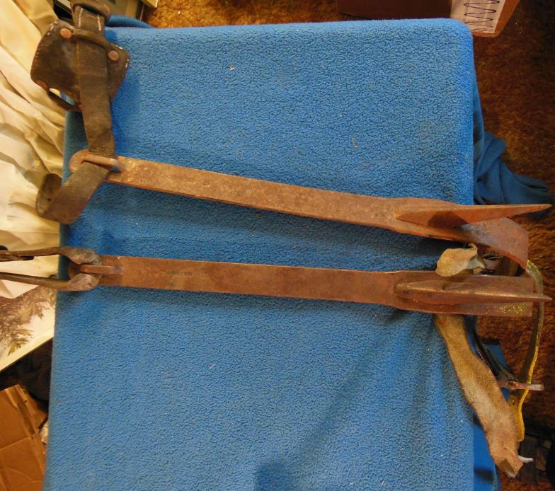 Used Tree Spurs - For Sale Classifieds