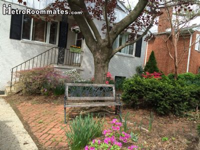 $800 Three room for rent in Arlington