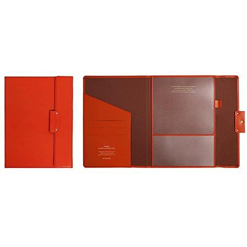 Professional Portfolio Briefcase File Folder File Organizer with Flap-Top Snap