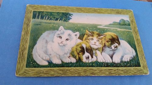 Vintage Postcard Kittens and Puppys