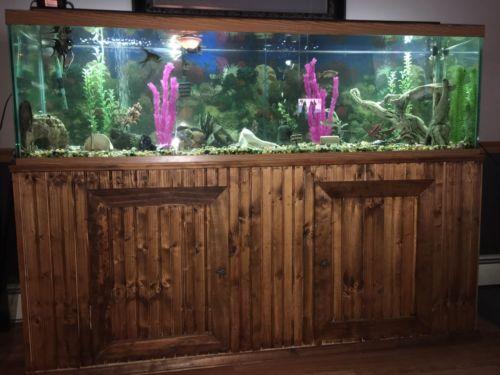 125 Gallon Fish Tank, Sturdy Wood stand Plus All Accessories.