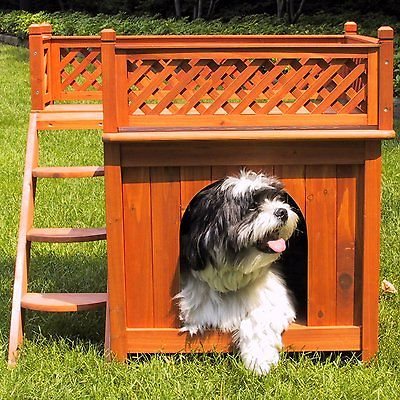 Dog Houses for Medium Dogs Outdoor Cat House Pet Castle Wood Room with a View