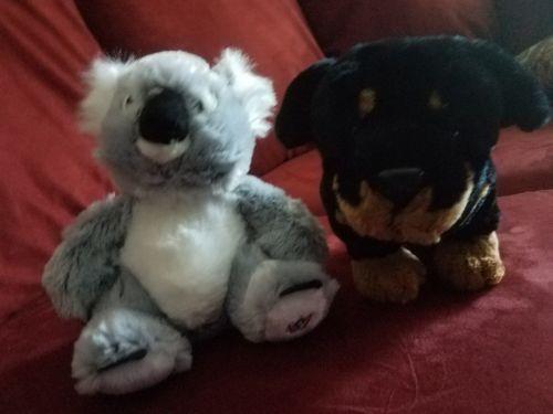 Ganz Webkinz  Lot of 2 Rottweiler and Koala - PLUSH ONLY NO CODES