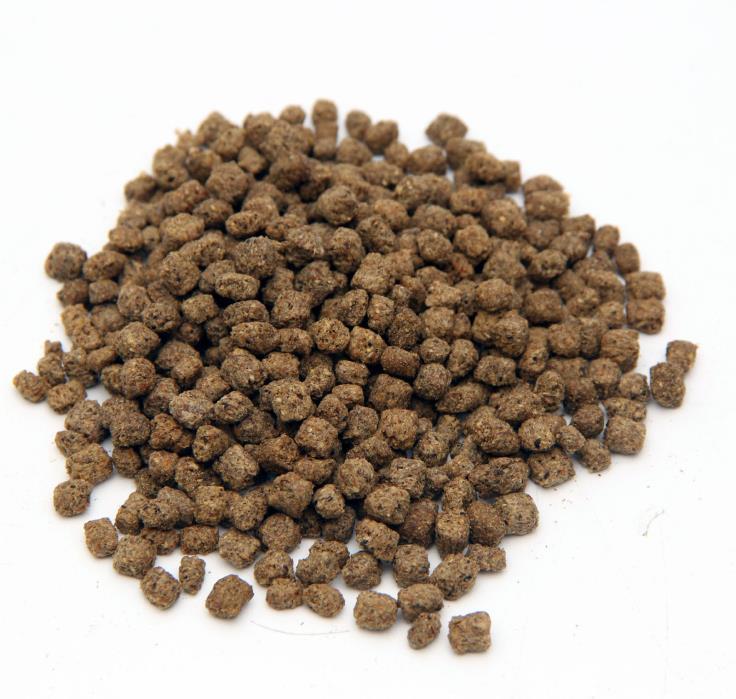Pond fish food floating/Slow sinking pellet Koi Goldfish 36% protein Koibay 3 lb