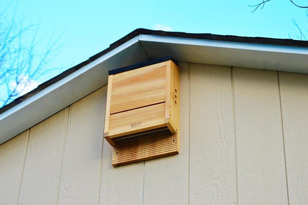 Bat House Cedar Wood Three Chamber