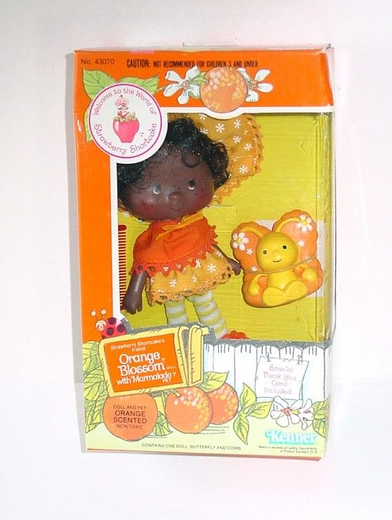 1982 Strawberry Shortcake ~ ORANGE BLOSSOM Doll W/Pet  ~ MIB