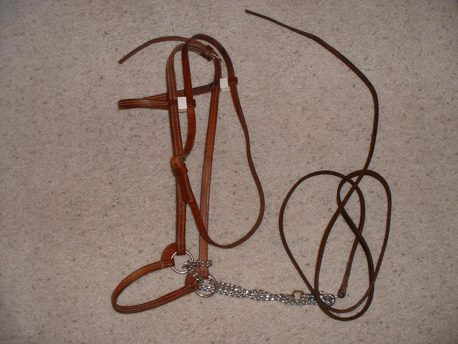 Mini Horse Show Halters For Sale Classifieds