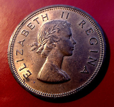 Red Gold Mint Beauty 1960 South Africa Penny  Queen Elizabeth II, Choice!