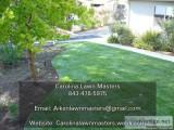 Carolina Lawn Masters