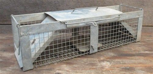 Havahart Live Humane Relocation Animal Trap Wire Cage Rat Rodent Bird Rabbit