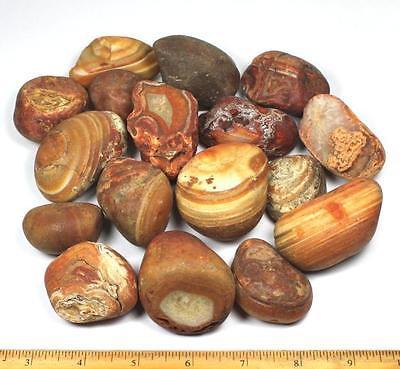 Rough Bahia Agates for tumbling, cutting and polishing - 5 lbs