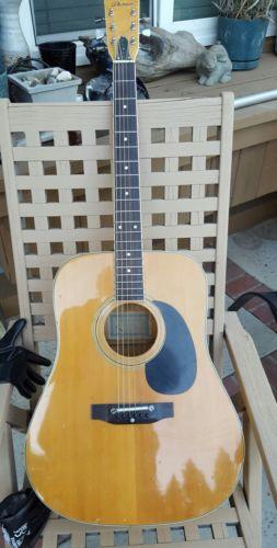 Vintage  acoustic dreadnought law suit guitar