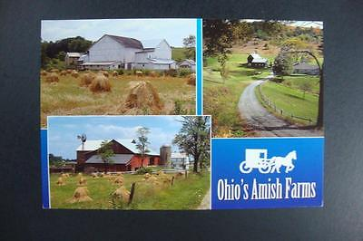 361) Ohio's Amish Farms Ohio Has The Largest Amish Population Of Any State In US