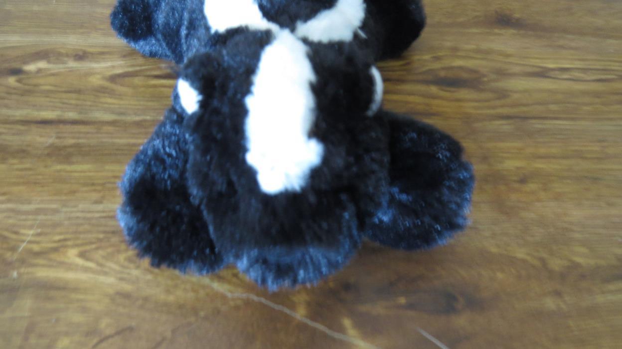 Cute Stuffed Skunk