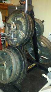 390 lbs olympic weight set (Meridian)