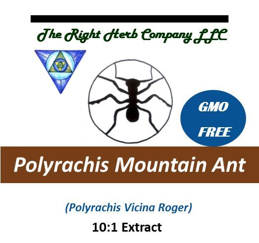 Polyrachis Vicina Mountain Ant 10:1 Extract Powder Chinese Superfood GMO FREE
